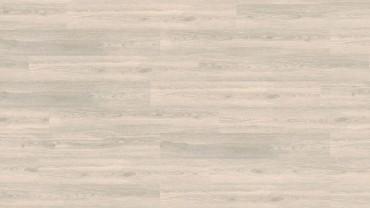 Wood Go - Polareiche