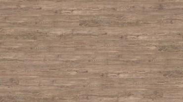 Wood Go - Bergfichte
