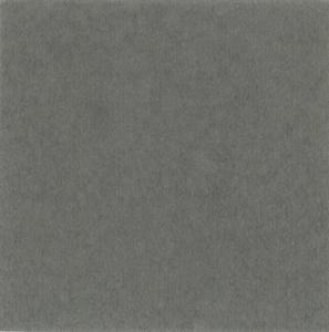 Forbo Enduro Stone - Stone Grey