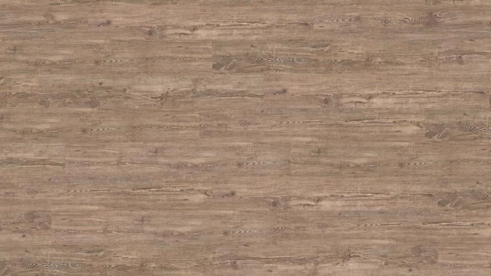 casawelt designvinyl wood go bergfichte ii kaufen sie bei casawelt parkett kork. Black Bedroom Furniture Sets. Home Design Ideas